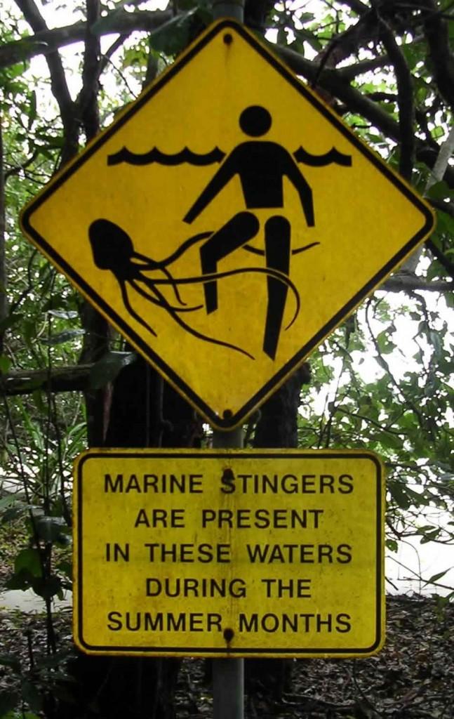 Marinesting1