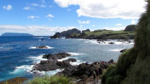 Nightingale Island