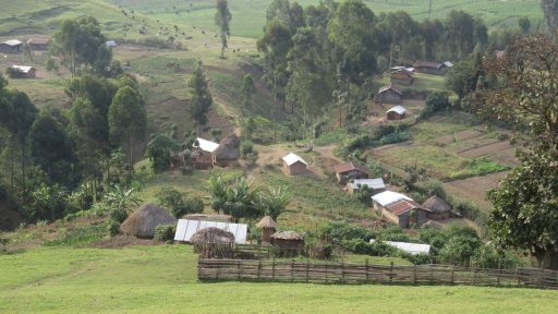 Masisi, Konžská demokratická republika