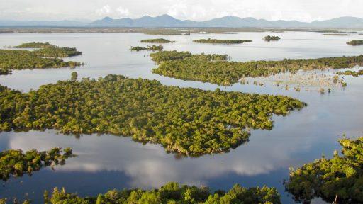 Borneo, Indonézia - národný park Danau Sentarum